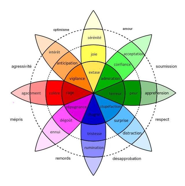 roue-des-emotions-intolérance-emotionnelle-mangeur-emotionnel